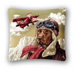 Pillowcase Aviator (45x45)